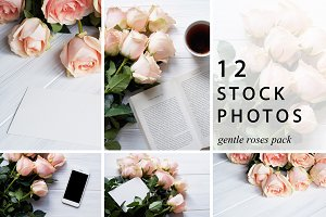 Gentle Roses Stock Photos Pack