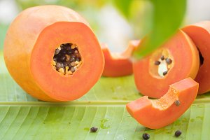 Tropical exotic papaya fruit and