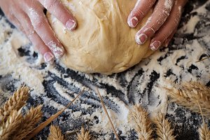 Knead the dough with wheat on dark