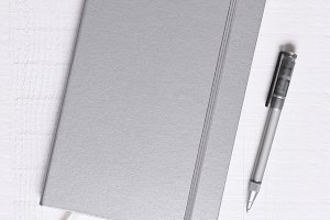 Sliver Journal and Pen