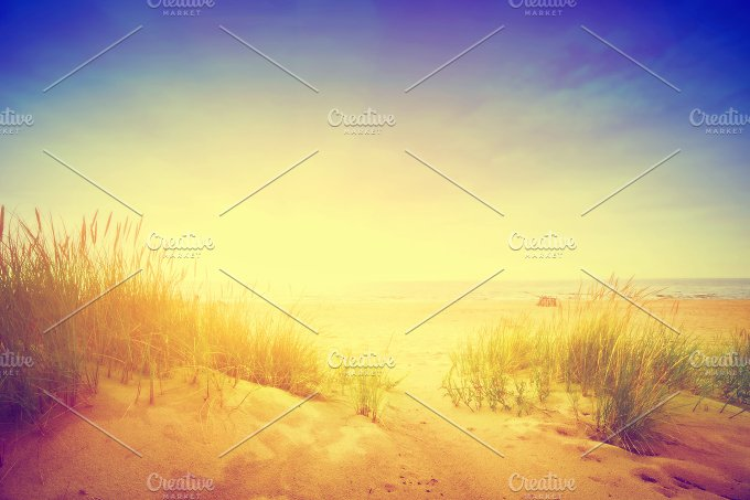 Beach with dunes and grass. Vintage - Nature