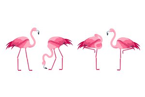 Cartoon Pink Flamingo Bird Set.