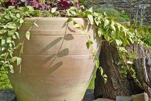Pot plants stone walls stone house