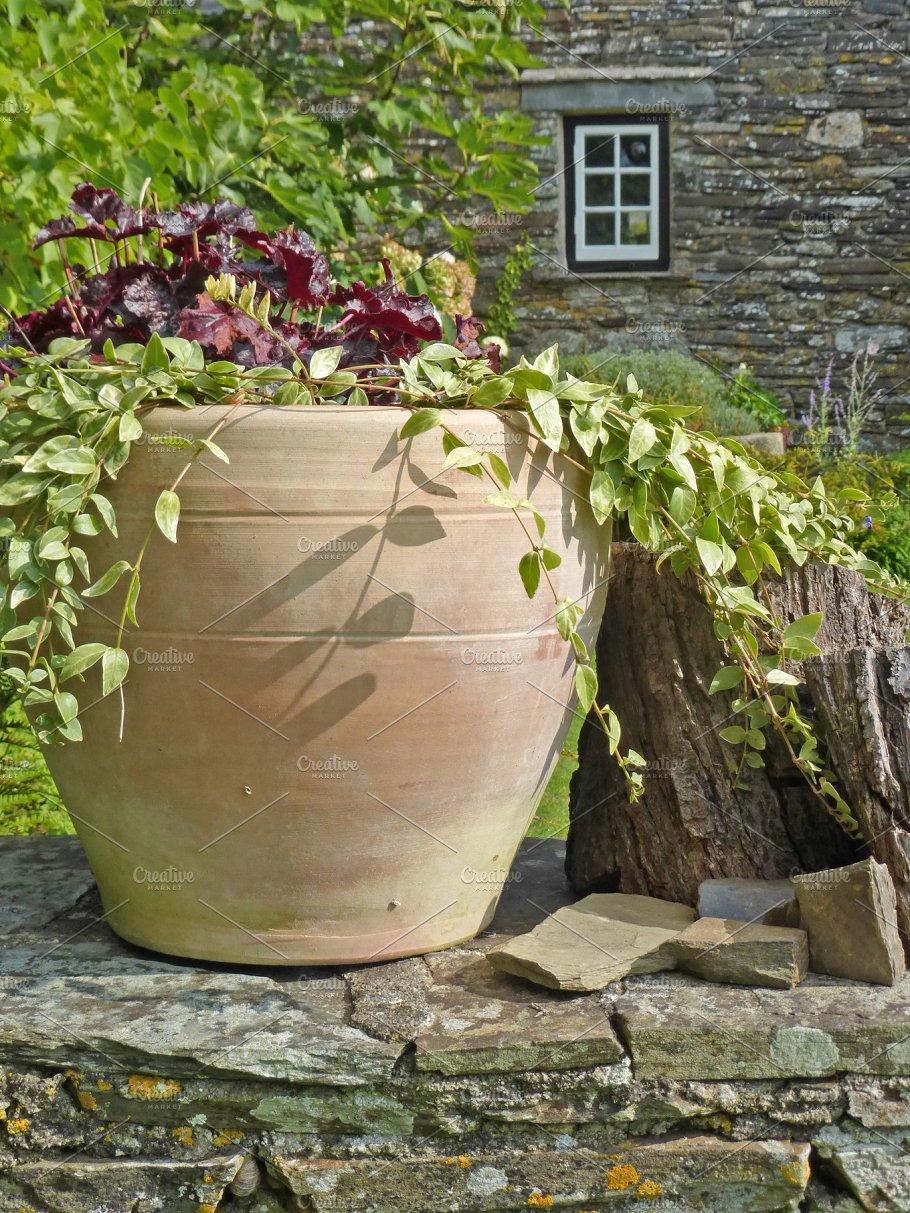 Pot Plants Stone Walls House