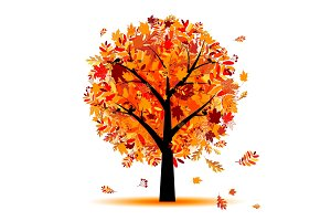 Beautiful autumn tree for your