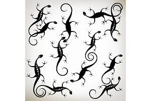 Lizard black silhouette, collection