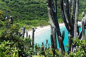 Beach Reserved