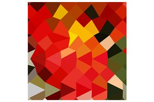 Lava Red Abstract Low Polygon Backgr