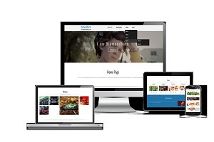 Diamondback Responsive Theme