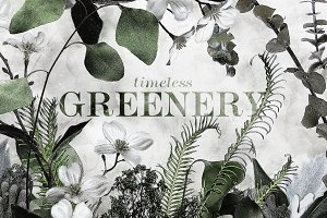 Timeless Greenery – Crafted Clip Art