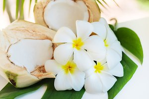 Fresh coconut cuts with tropical