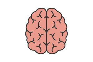 Human brain color icon
