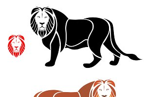 Vector of lion design. Animal.