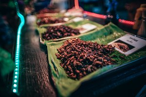Fried Sadigg Bugs for Sale