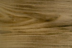 Nettle tree wood texture