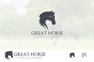 Elegant Horse Head Long Hair Logo