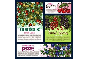 Garden and wild berry fruits posters