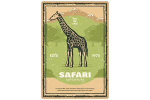 African safari with giraffe animal