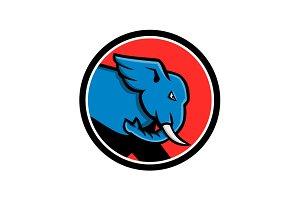 Bull Elephant Head Charging Circle