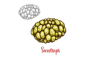 Sweetsop, sugar or custard apple