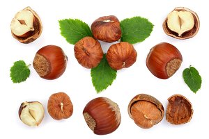 Hazelnuts with leaves isolated on