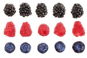blackberry blueberry raspberry