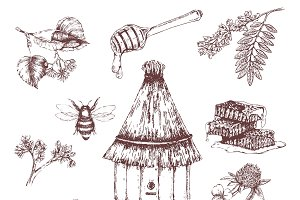 Honey Elements Hand Drawn Set