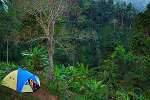 Family adventure in tropical forest