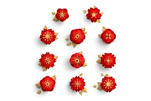Red paper cut flowers