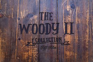 The Woody II - 101 wood textures