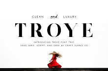 Troye Font Trio - Clean & Luxury by  in Serif Fonts
