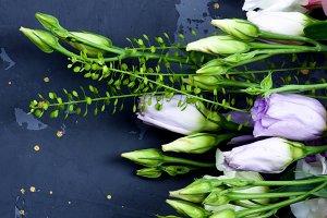 Lisianthus Flowers Frame