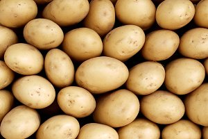 Background of White Potato