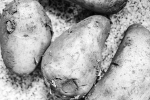 Potatoes Background in Black White
