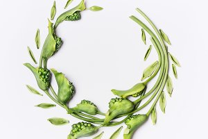 Wreath frame made of green flowers