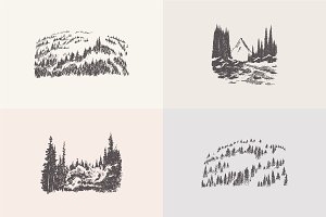 Collection of forest landscapes