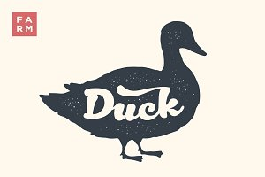 Duck. Lettering, typography