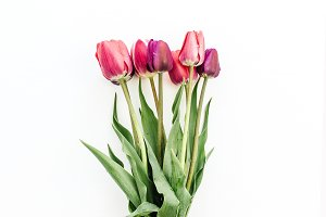 Tulips bouquet in female hand