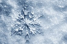 Snowflake on snow, blue tint