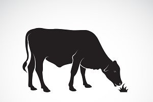 Vector of a  cow is eating grass.