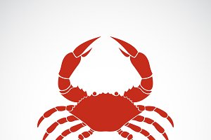 Vector of a crab on white background