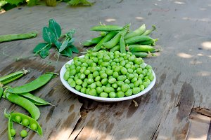young green peas in bowl and Pods pe