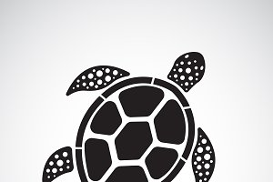 Vector of turtle design.  Reptile.