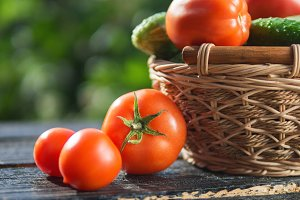 Tomatoes and cucumbers in a basket
