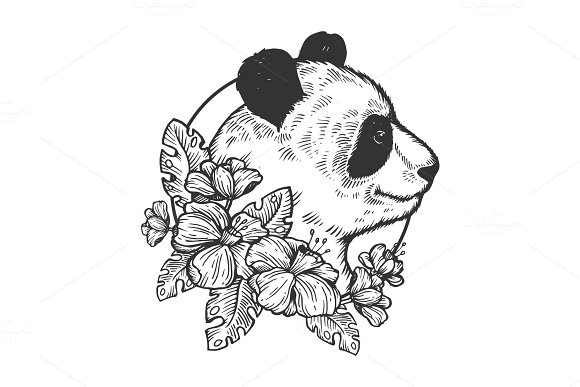 Panda bear animal engraving vector