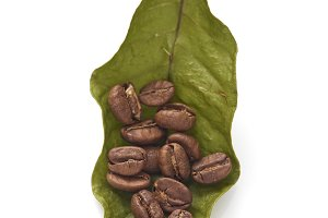 Coffee beans with coffee leaves