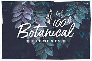 100 Handsketched Botanical Elements