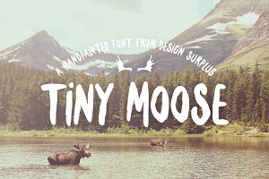 Tiny Moose Font