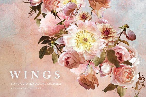 Digital Flower Clip Art - Wings