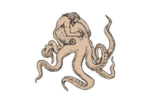 Hercules Fighting Giant Octopus Draw